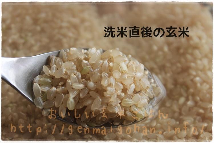 発芽玄米の作り方 洗米直後