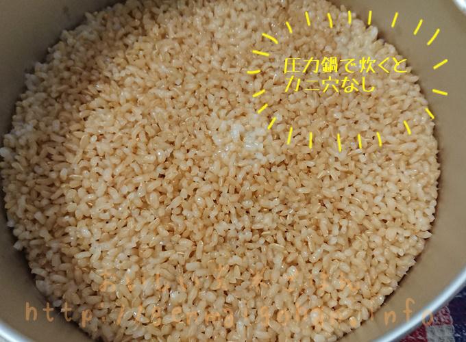 マジックブラウンの玄米炊きあがり