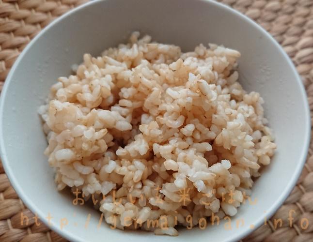 コジマフーズ 有機玄米ごはん10